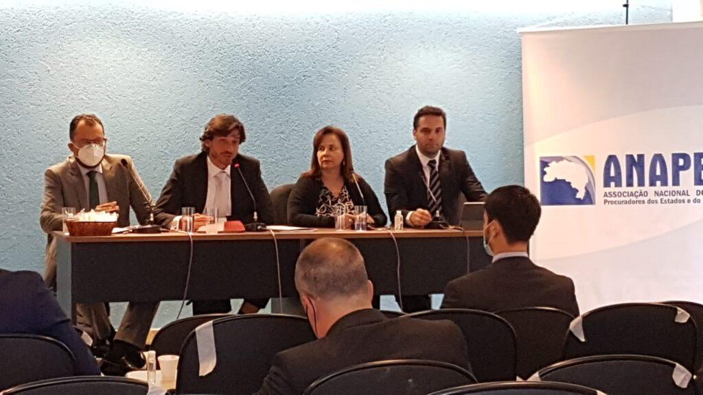 Conselho Deliberativo da ANAPE realiza primeira reunião híbrida